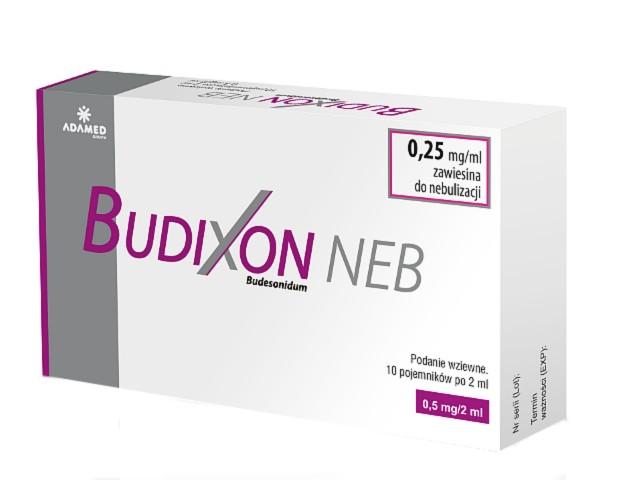 Budixon Neb interakcje ulotka zawiesina do nebulizacji 0,25 mg/ml 10 poj. po 2 ml