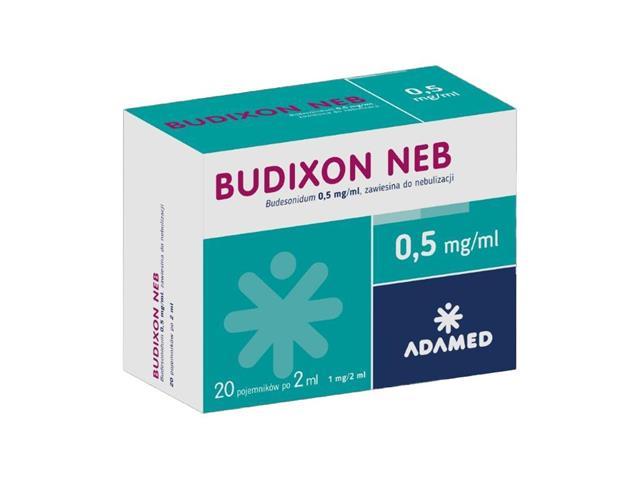 Budixon Neb interakcje ulotka zawiesina do nebulizacji 0,5 mg/ml 20 poj. po 2 ml