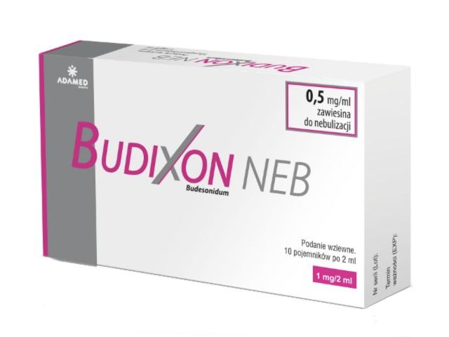 Budixon Neb interakcje ulotka zawiesina do nebulizacji 0,5 mg/ml 10 poj. po 2 ml